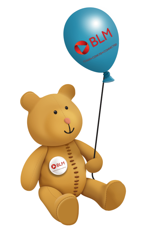 dot2dot bear BLM stanley